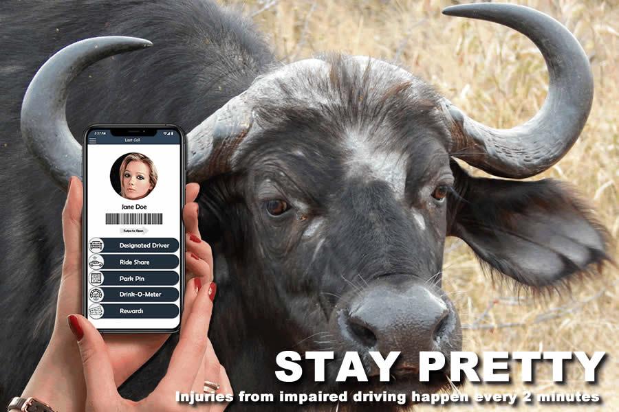 Stay Pretty - Last Call